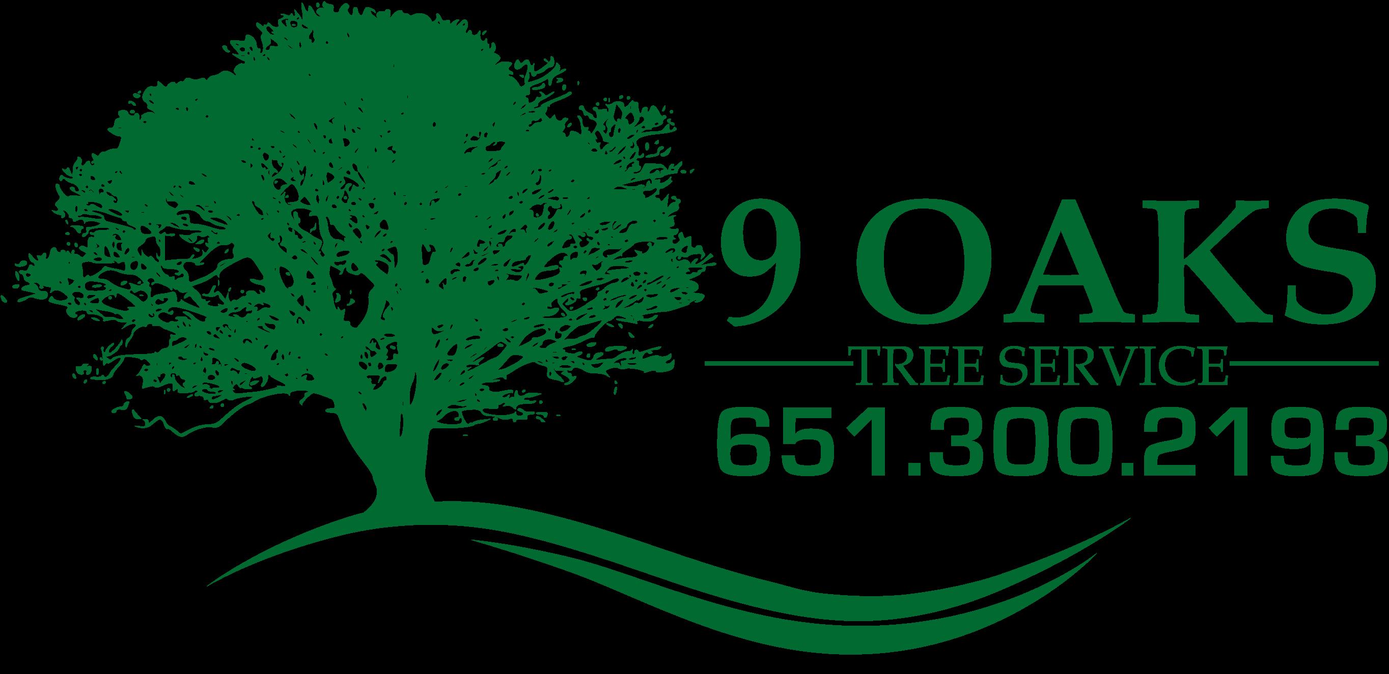 Tree Service Woodbury MN | Tree Service St. Paul MN